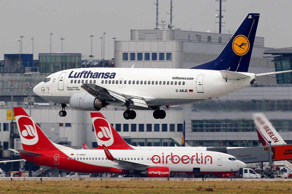 Lufthansa sticht damit unter anderem die Konkurrenten Eurowings und Easyjet aus.