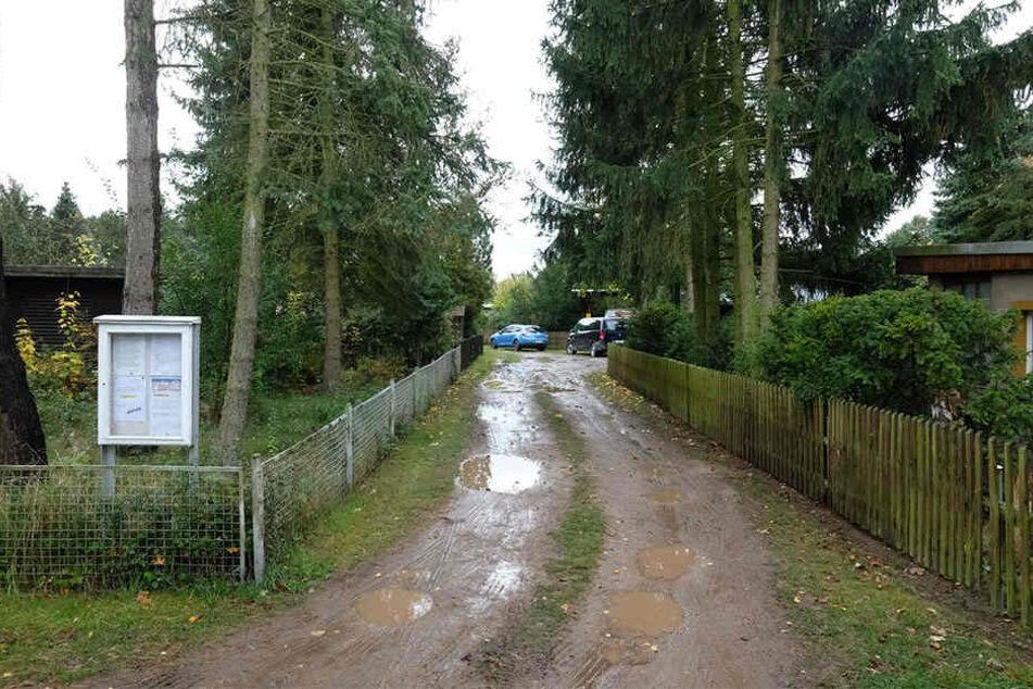 In einer Bungalow-Siedlung in Löbnitz eskalierte in der Nacht zu Donnerstag ein Streit, in dessen Folge scharf geschossen wurde.