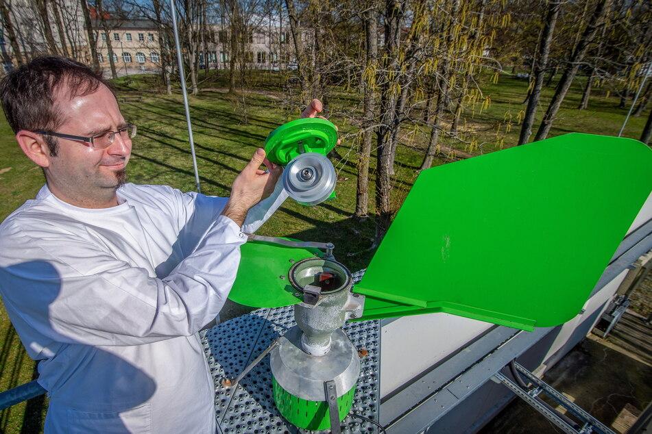 Markus Naake (35) entnimmt in der Landesuntersuchungsanstalt Chemnitz Proben aus der Pollenfalle.