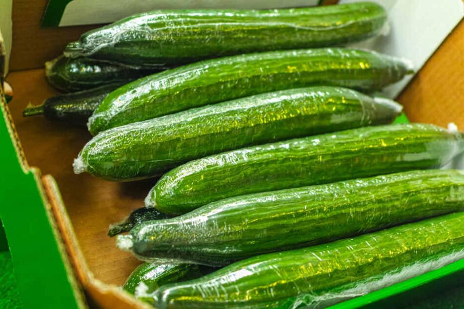 Gurken werden in vielen Supermärkten noch in Plastik eingepackt.