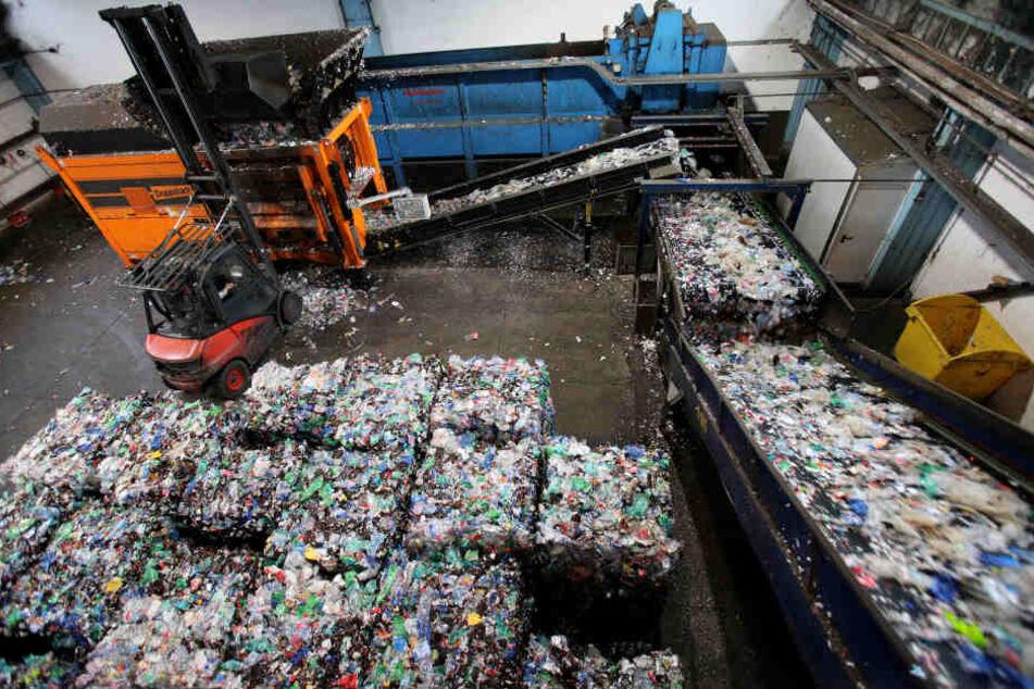 """So landet auch unser Müll in Rostock, wo er in einer Veolia-Recycling-Anlage zerkleinert und aufbereitet wird. Aus einem Teil davon (so genannte """"PET-Flakes"""") können neue Flaschen produziert werden."""