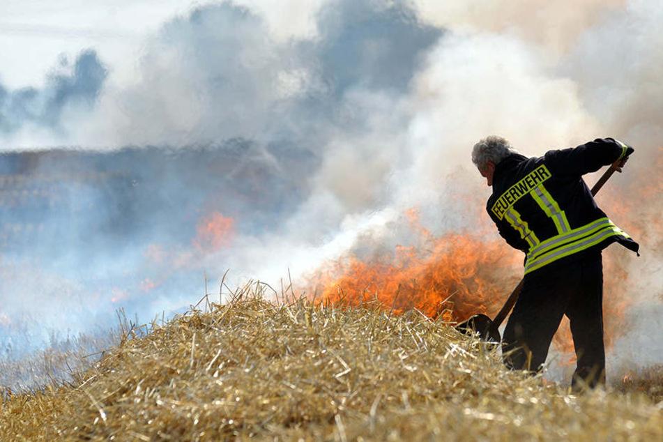 Bei Erntearbeiten ist ein Feld im Ilm-Kreis in Brand geraten. (Archivbild)