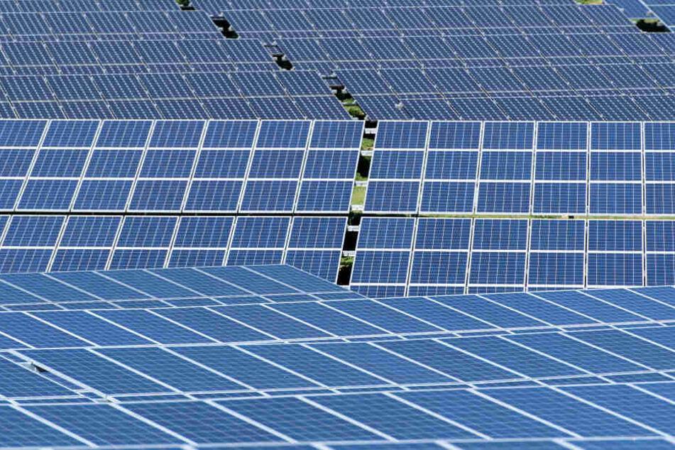 In Bad Langensalza haben Unbekannte Solarmodule geklaut.
