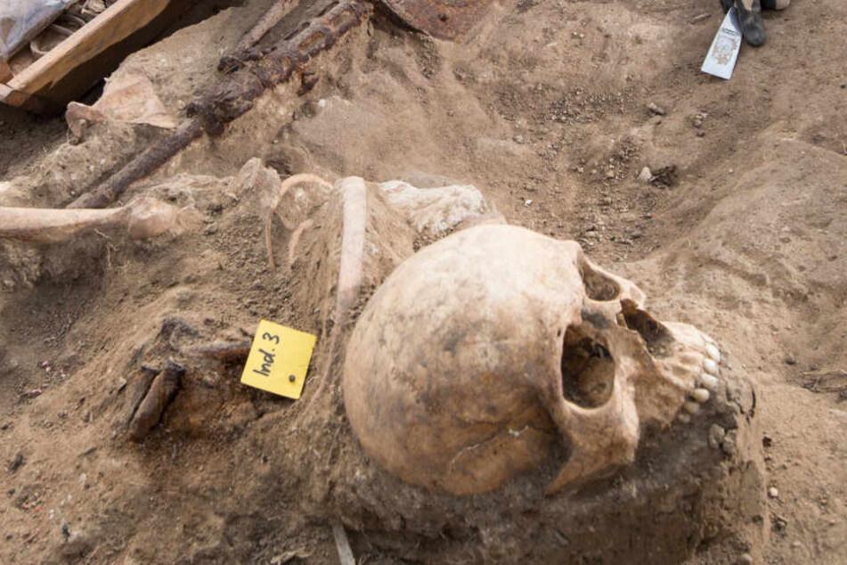 In Thüringen werden jährlich mehrere tausend Artefakte illegal ausgegraben und verscherbelt. (Symbolbild)
