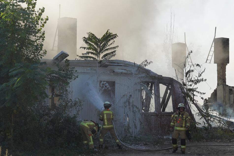 Einsatzkräfte der Feuerwehr löschen eine brennende Holzbaracke in der Dolomitenstraße im Ortsteil Pankow.