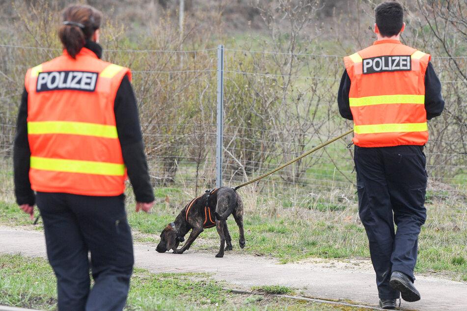 Zwei Polizisten sind mit einem Fährtenspürhund im Einsatz. (Symbolbild)