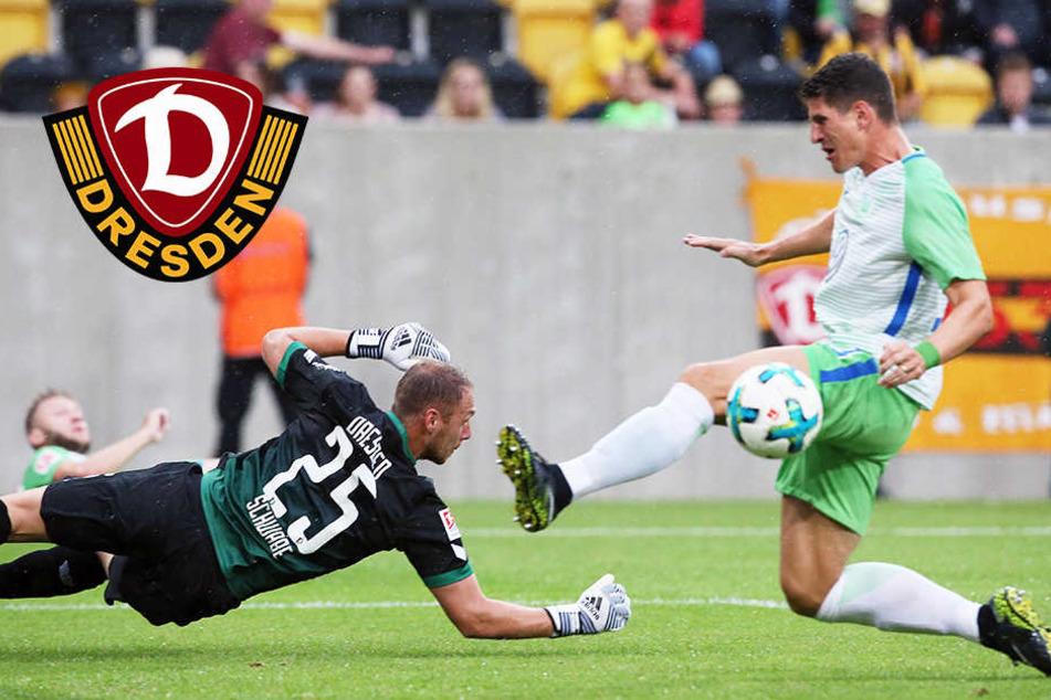 Ohne sechs! Dynamo verpatzt die Generalprobe gegen Wolfsburg