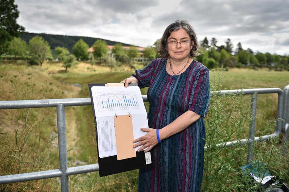 Umweltbürgermeisterin Eva Jähnigen (53, Grüne) zeigt ein Niederschlagsdiagramm für Dresden.