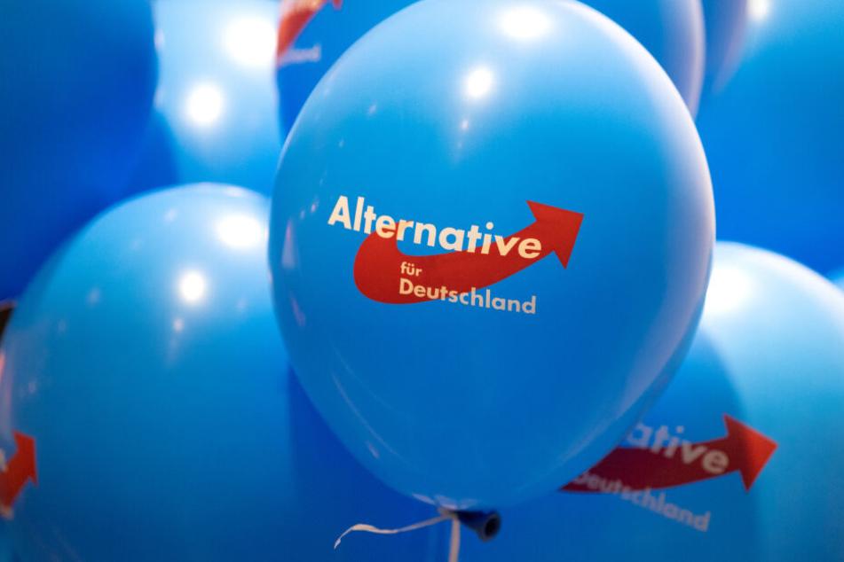 Knapp drei Monate vor der Landtagswahl in Brandenburg kann die AfD in der Wählergunst stark zulegen.