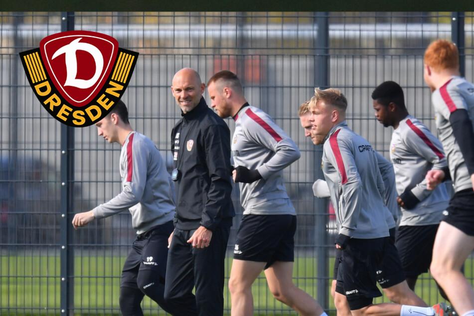 Sandhausen, Kiel, Dresdner SC: Vereine, die Beispiel für Dynamo sein sollten