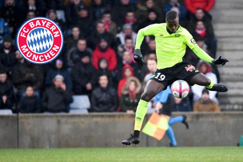 Rekordablöse! FC Bayern will für Nicolas Pépé wohl tief in die Tasche greifen