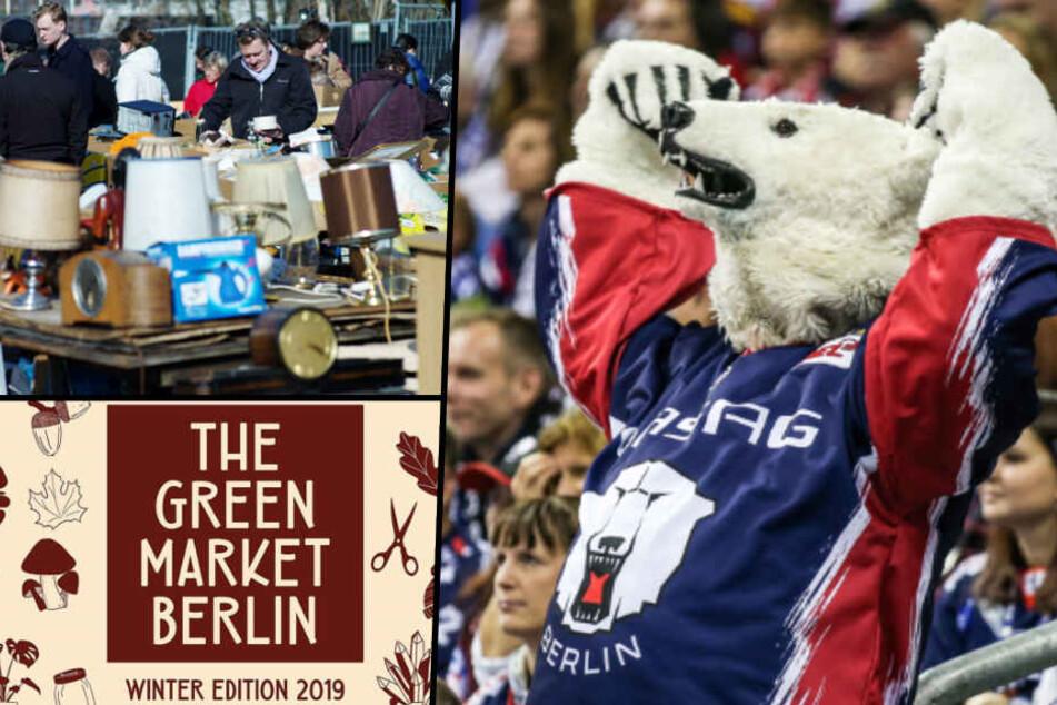 Eisbären, The Green Market, Flohmarkt: Sonntags-Tipps für Berlin!