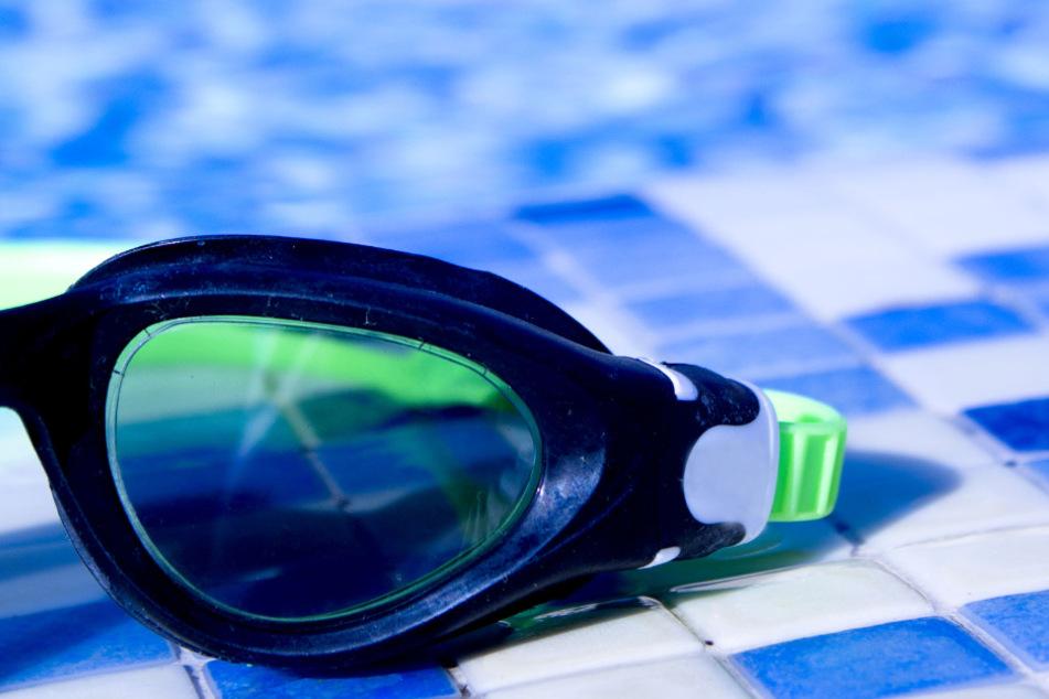 Taucherbrillen sammelt Kater Avery seit neustem und bringt sie seinem Frauchen nach Hause. (Symbolbild)