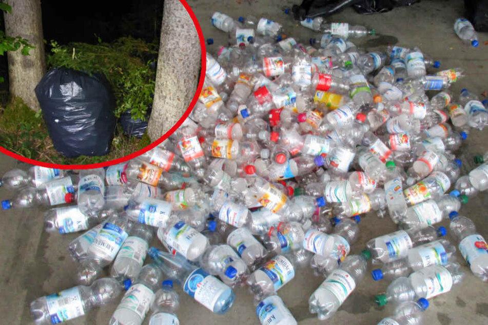 Rund 3800 Pfandflaschen wurden in dem Wald entdeckt.
