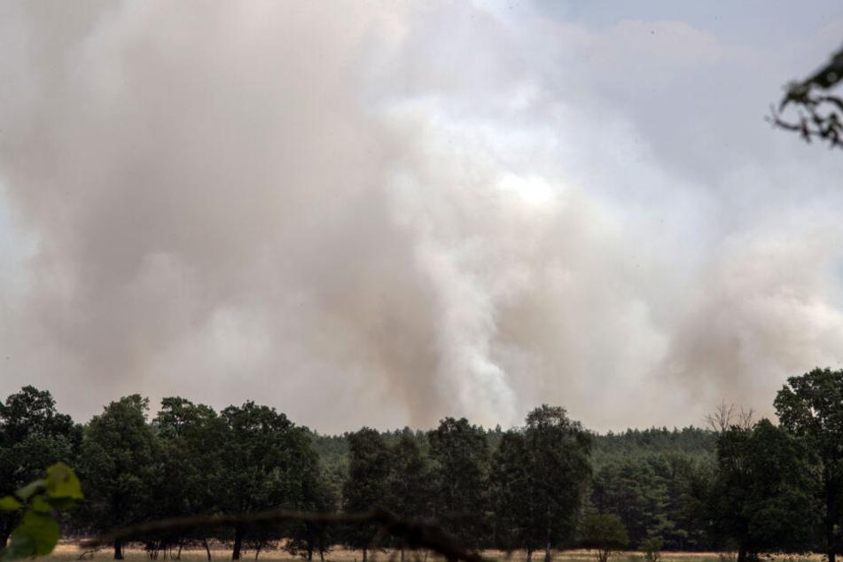 Nahe der evakuierten Ortschaft Jessenitz-Werk steigt Rauch aus dem Wald auf.