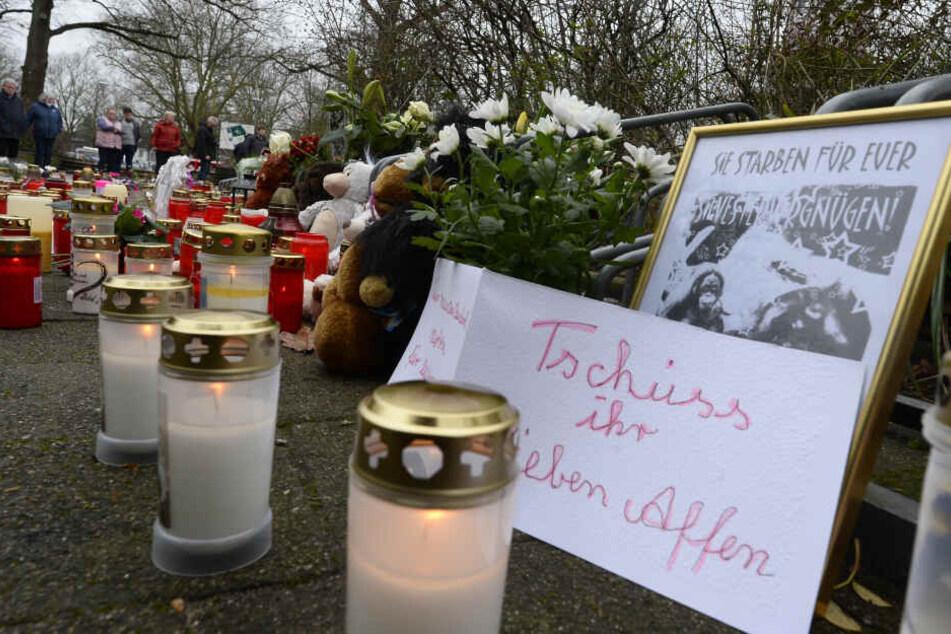 Nach dem verheerenden Brand im Affenhaus des Krefelder Tierparks an Silvester hatten viele Besucher ihrer Trauer damit Ausdruck verliehen (Archivbild).