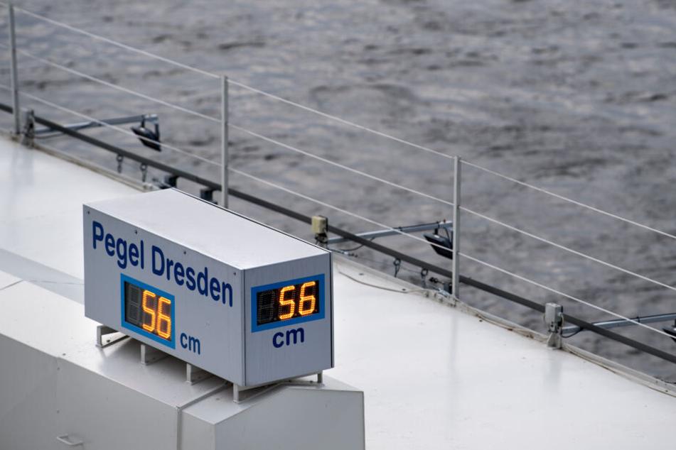 Der Pegel der Elbe in Dresden sank unaufhörlich, machte auch der Schifffahrt zu schaffen.