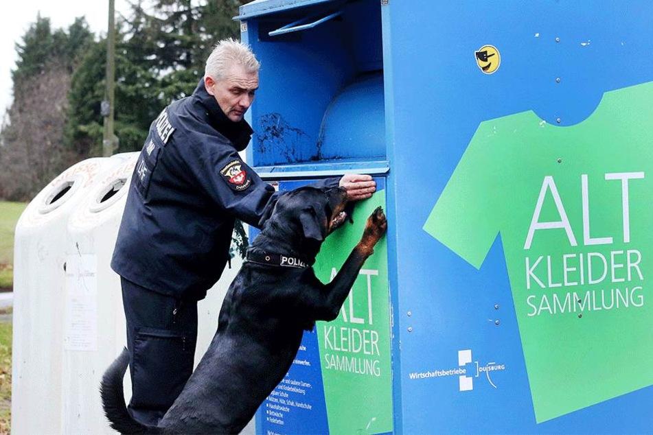 """Polizeispürhund """"Amigo"""" und ein Polizeihundeführer suchten nach Spuren an einem Altkleidercontainer."""