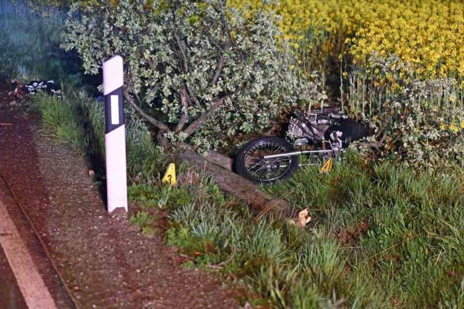 Das Motorrad fällte bei dem Unfall einen kleinen Baum.