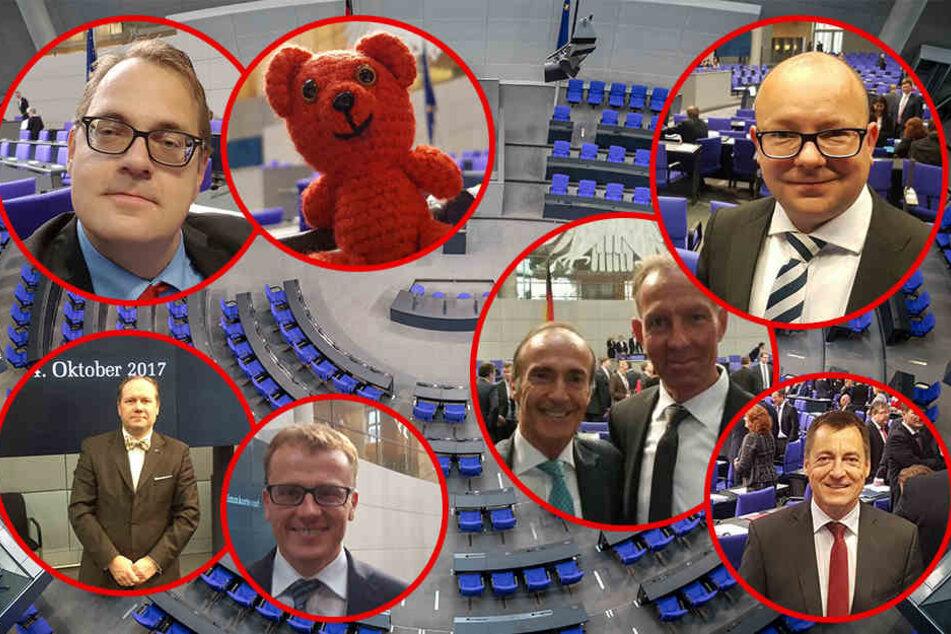 Die Neuen im Parlament (im Uhrzeigersinn): Frank Müller-Rosentritt (FDP), Jens Lehmann (CDU), Torsten Herbst (FDP), Alexander Krauß (CDU), Siegbert Droese (AfD), Sören Pellmann und sein Roter Bär (Die Linke).