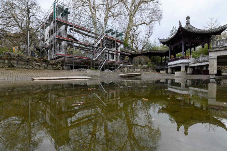 Der Pavillon soll im Herbst wiedereröffnet werden.