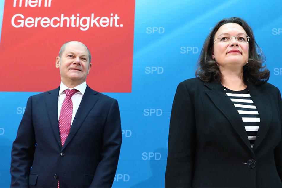 Am Dienstag startet die SPD ihr Mitgliedervotum.