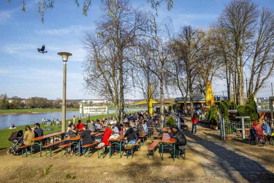 In wenigen Tagen können auch Wassersportler am Johannstädter Fährgarten anlegen.