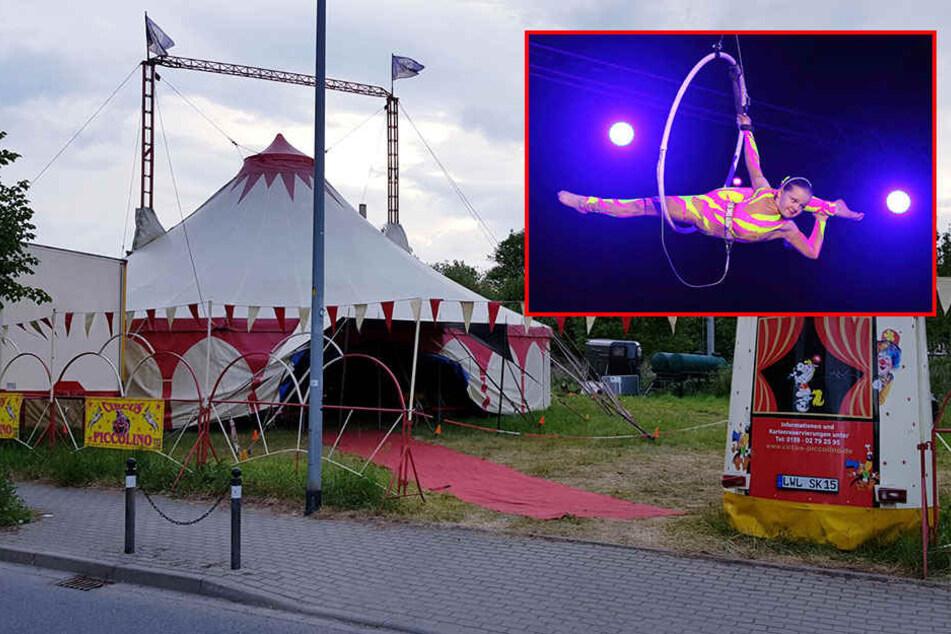Stahlseil im Zirkus gerissen: Supertalent-Teilnehmerin (14) stürzt in die Tiefe