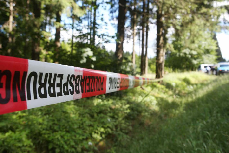 Die Polizei sperrte das Waldstück rund um den Fundort der Leiche ab.