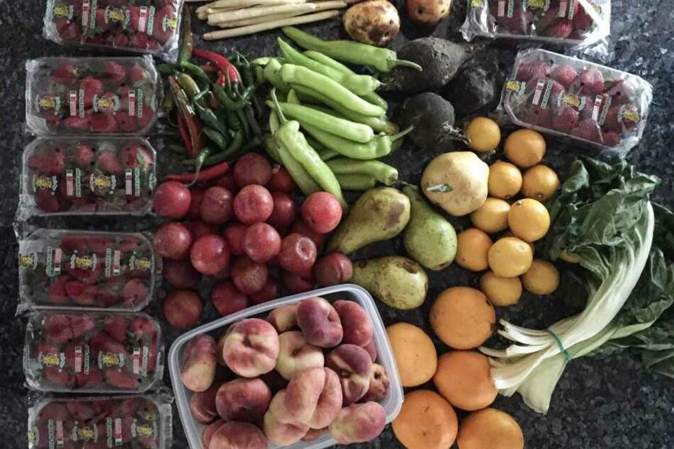 Als Foodsaver bekommt man es mit Unmengen an Lebensmitteln zu tun, die der Einzelhandel sonst entsorgen würde. Ein Glück, dass sich viele freudige Abnehmer im Bekanntenkreis und der Nachbarschaft finden.