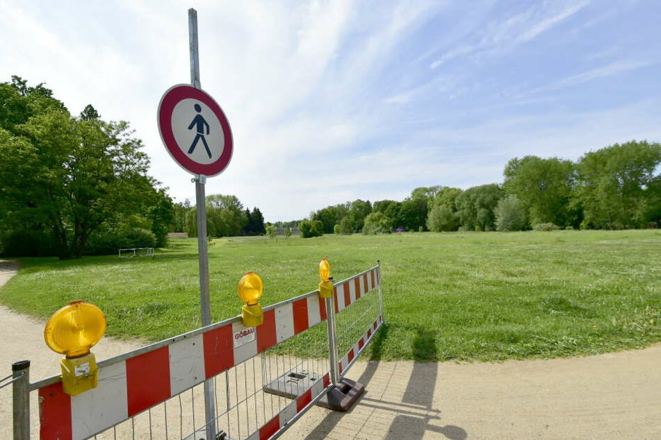 In Zwickau gibt es über 3000 Hundebesitzer, aber nur sechs Hundewiesen. Die in Crossen ist in einem jämmerlichen Zustand.
