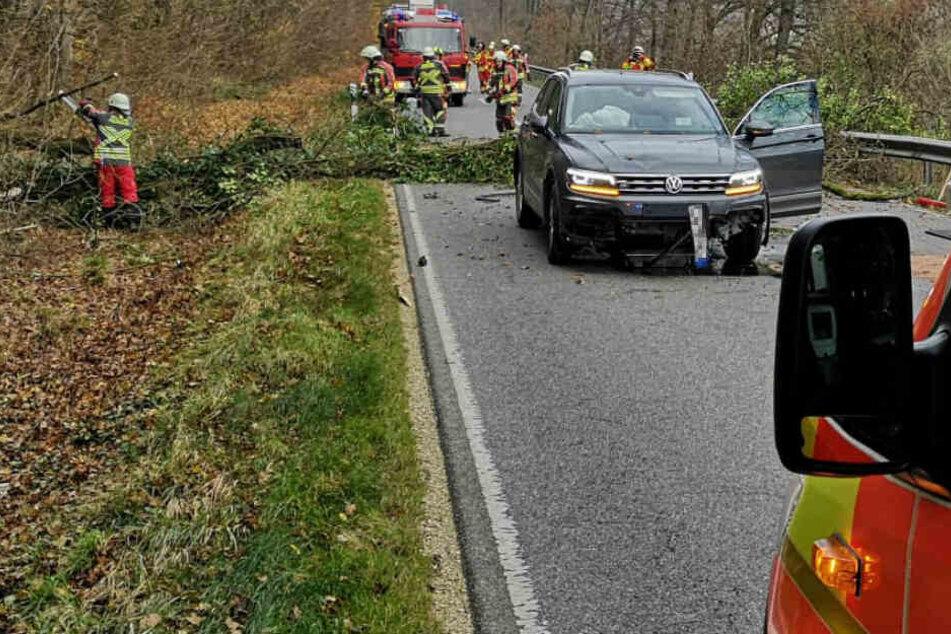 Baum fällt direkt vor fahrenden SUV: Unfassbares Glück trotz Crash