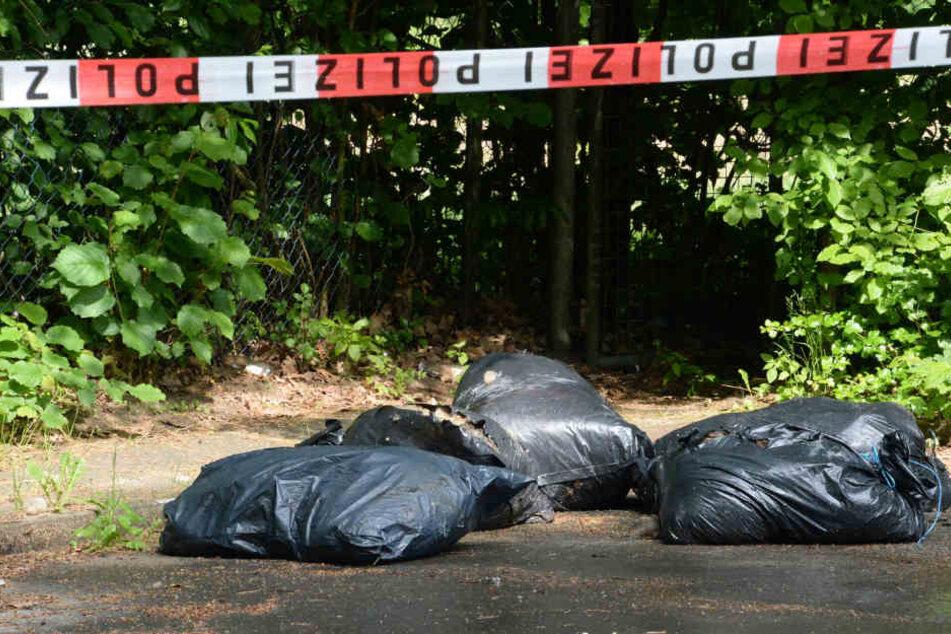 Mehrere Säcke Schlachtabfälle befanden sich in dem Container.