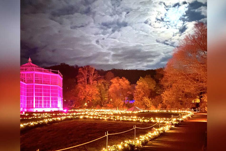 Alle Gebäude im Park sind illuminiert, auch Wiesen und Bäume.
