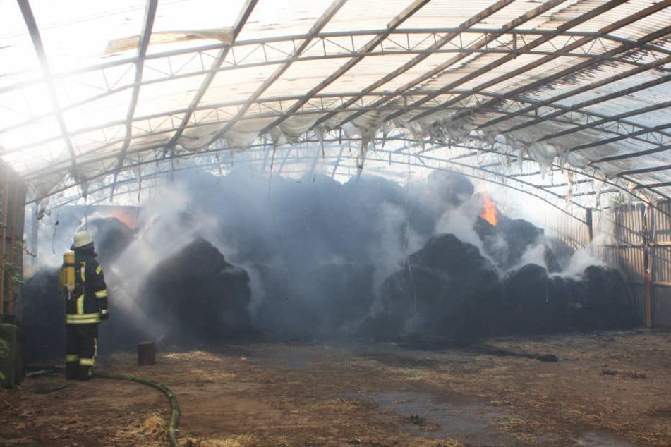 Eine dichte Rauchwand entstand bei dem Brand.