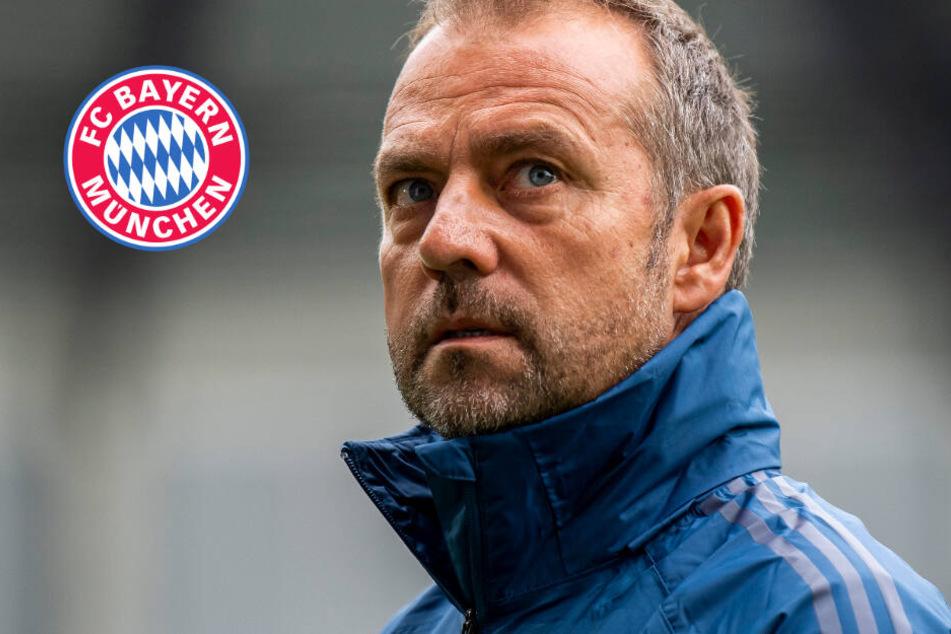 Neuer Bayern-Trainer erst in drei Wochen? Erster Kandidat gibt Münchnern Korb
