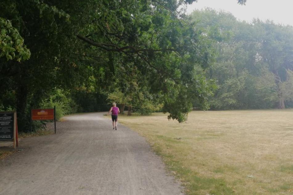 Eine Joggerin ist am Morgen allein im Rosental unterwegs. (Symbolbild)