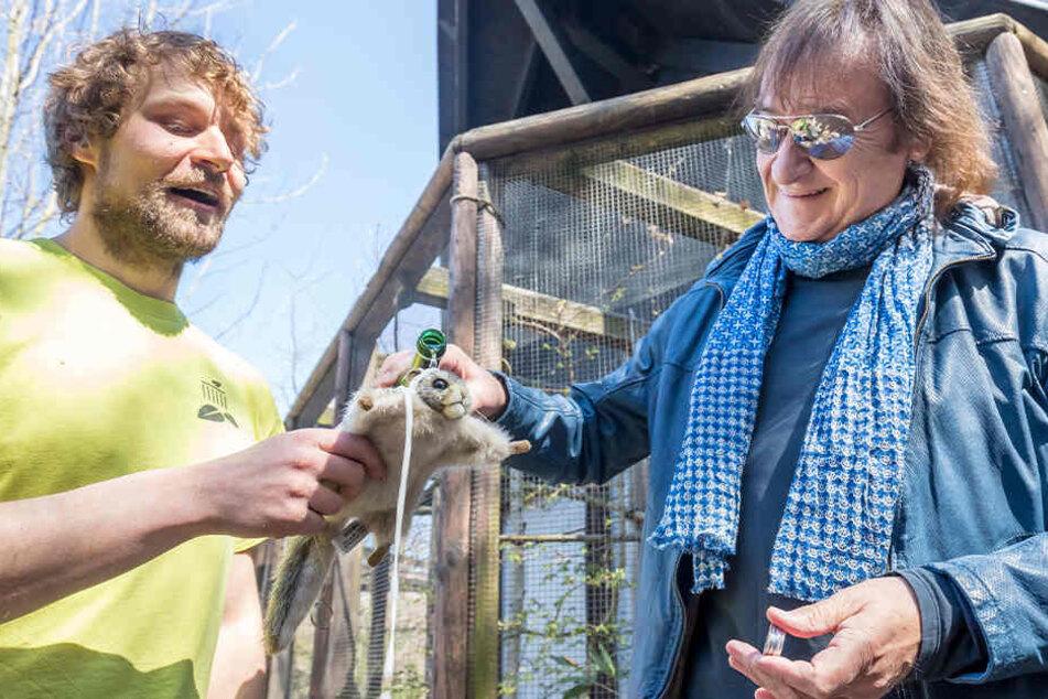 """Tierpfleger Peter Hömke (32, l.) und Dieter """"Maschine"""" Birr (75) bei der Sekttaufe mit einem Plüsch-Glider als """"Maschinchen""""-Ersatz."""
