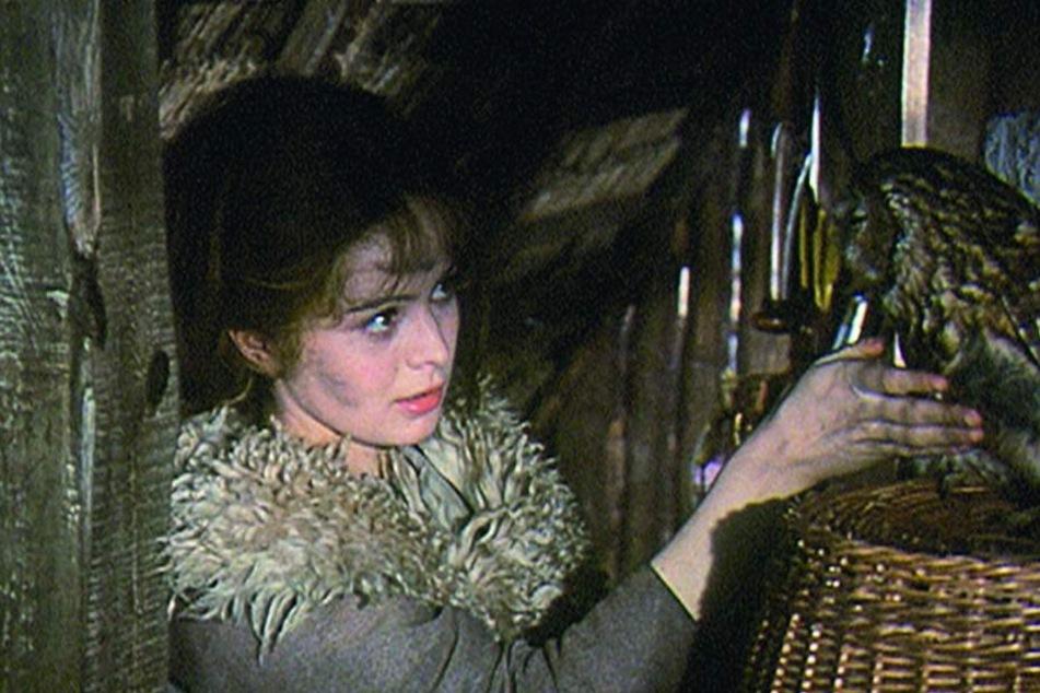 Damit die Eule Rosalie zwinkert, musste Regisseur Vorlicek ihr mit Stroh in den Hintern pieksen.