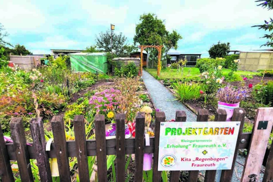 """Der Kleingartenverein """"Erholung"""" stellte den Kindern einen Projektgarten zur Verfügung."""
