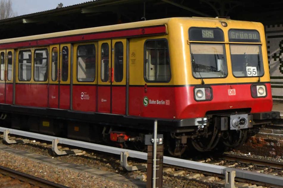 Eine S-Bahn im Bahnhof Schöneweide.
