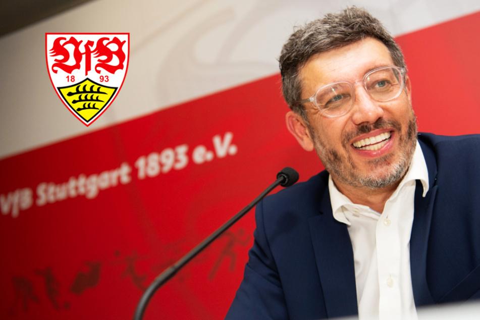 Superwahlsonntag beim VfB im Live-Ticker: Claus Vogt wieder zum Präsidenten gewählt!
