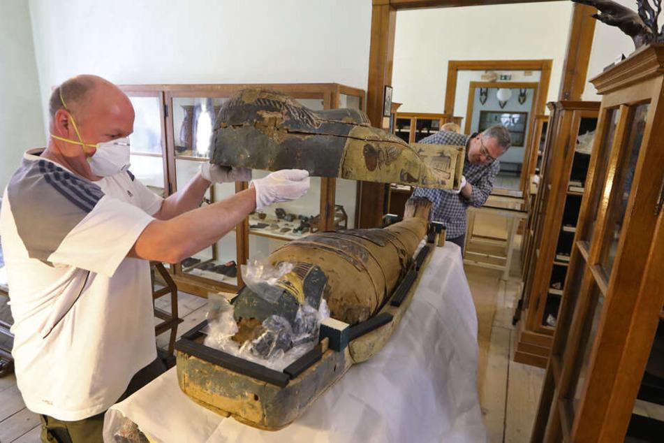 Sammlungs-Techniker Mathias Merbitz (l.) und der Chef des Naturkundemuseums, Ronny Rößler verschließen den mit Luftpolstern ausgepolsterten Sarkophag.