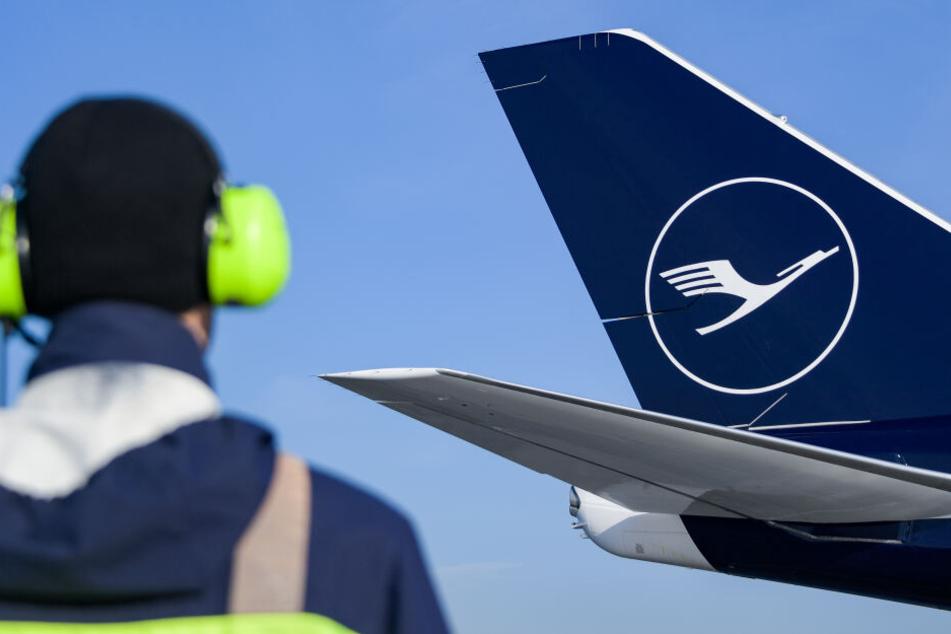 Die beiden Flugzeuge mussten laut einer Bürgerinitiative einander ausweichen (Symbolfoto).