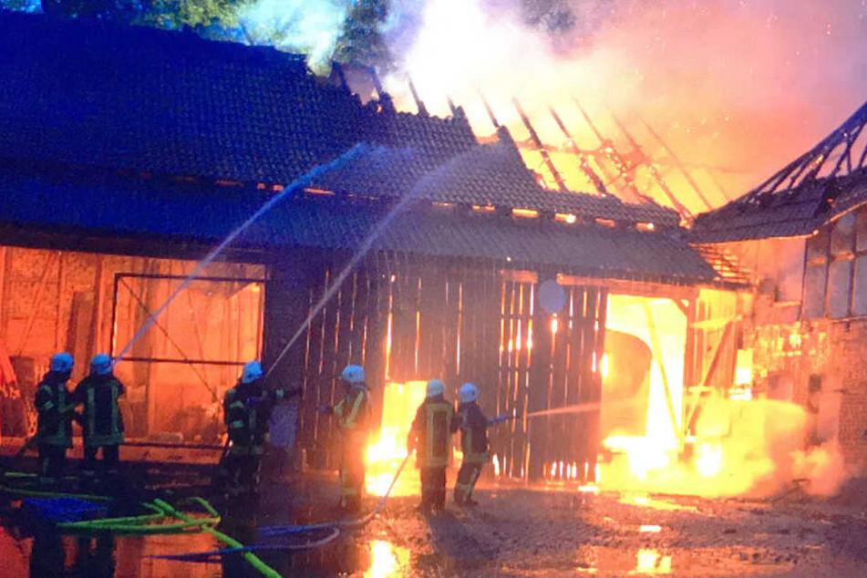 Die Flammen schlugen meterhoch.