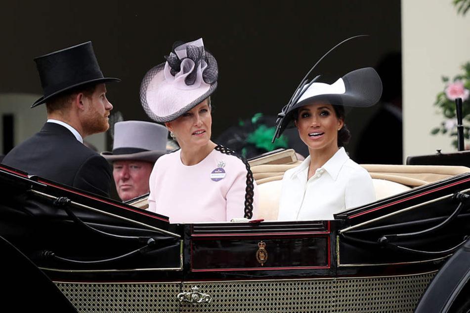 An der Seite von Prinz Harry und Gräfin Sophie von Wessex feierte Herzogin Meghan ihre Premiere beim Pferderennen in Ascot.