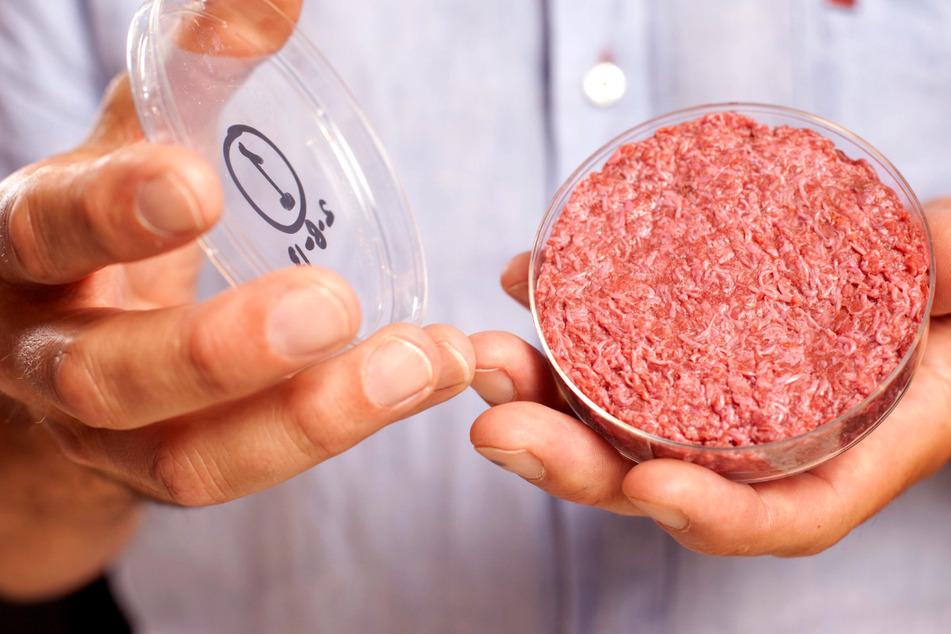 Künstliches Fleisch aus dem Labor in einer Petrischale: Mehrere Unternehmen treiben die Forschung zu Laborfleisch voran.