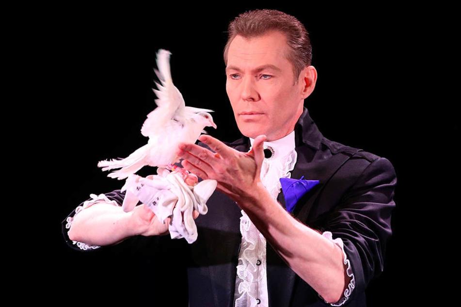 Die Arbeit mit Vögeln ist seit über 20 Jahren das Markenzeichen des Finnen  Marko Karvo.