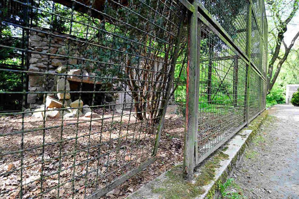 Botanischer Garten kämpft ums Überleben!