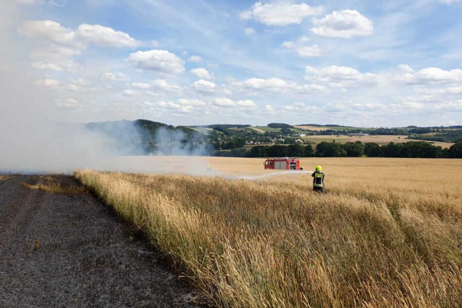 Auch das Feld geriet in Brand.